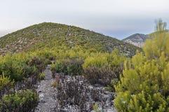 Пустой путь в горах Стоковое фото RF