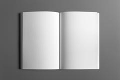 Пустой плакат рогульки изолированный на сером цвете Стоковое фото RF