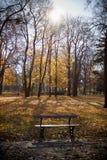 Пустой стенд в парке Стоковые Изображения