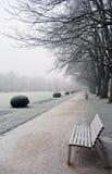 Пустой стенд в покрытом парке изморози зимний день Стоковое Фото