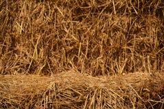 Пустой стог связки сена для предпосылки (для дисплея продукта) Стоковые Изображения RF