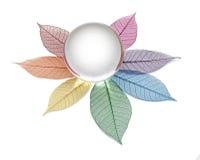 Пустой хрустальный шар на каркасных листьях Стоковые Фото