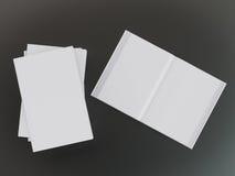 Пустой шаблон модель-макета книги Стоковое Изображение