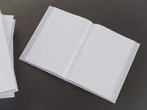 Пустой шаблон модель-макета книги Стоковое Изображение RF