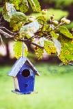 Пустой birdhouse ждет терпеливо для некоторых пернатых нанимателей для того чтобы двинуть внутри Стоковое Изображение