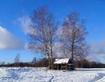 Пустой woodshed стоковое фото rf