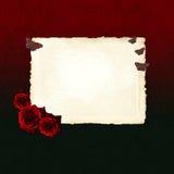 пустые бабочки завертывают красный лист в бумагу роз Стоковые Фото