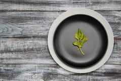 Пустые белые и черные плиты с зеленым цветом a выходят над старой серой деревянной предпосылкой Взгляд сверху скопируйте космос д стоковая фотография rf