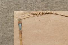Пустые бумага, колосок и paintbrush Стоковое Изображение RF