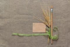 Пустые бумага, paintbrush и колоски Стоковое Фото