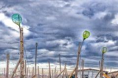 пустые бутылки на строках лоз Стоковая Фотография RF