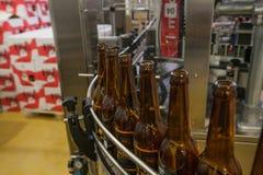 Пустые пивные бутылки, на конвейерной ленте, Binding винзавод Стоковое Изображение RF