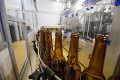 Пустые пивные бутылки, на конвейерной ленте, Binding винзавод Стоковые Изображения RF