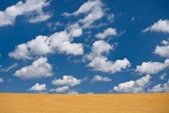 пустые поля Стоковое Фото
