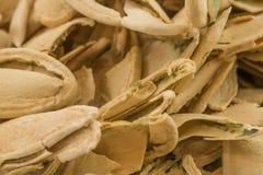 Пустые раковины семени тыквы Стоковое фото RF