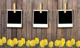 Пустые рамки fhoto на веревке для белья на деревянных загородке и цветках Стоковые Фото