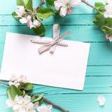 Пустые цветки бирки и яблони на предпосылке бирюзы деревянной Стоковые Изображения