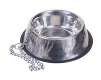 Пустые шар и цепь собаки Стоковое Изображение