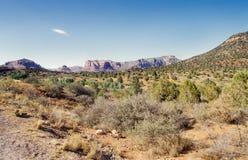 пустыня Аризоны стоковые изображения