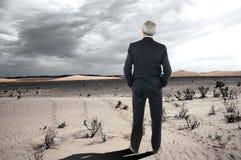 пустыня бизнесмена Стоковая Фотография RF