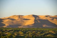 Пустыня бычковых, Монголия Стоковые Изображения