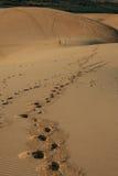 Пустыня в Вьетнаме Стоковое Изображение