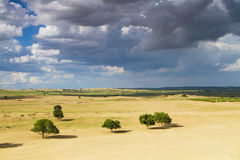 Пустыня в Иннер Монголиа Стоковые Фотографии RF