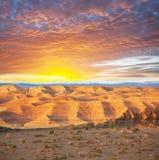 Пустыня Гоби стоковая фотография