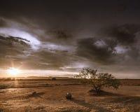 пустыня запустелая Стоковое Изображение RF