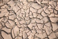 Пустыня земли Стоковые Фото