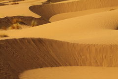 пустыня Марокко Сахара Стоковые Фотографии RF