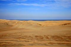 Пустыня морем стоковое изображение rf