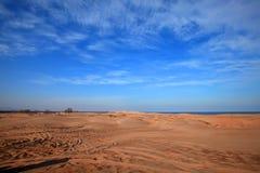 Пустыня морем стоковое изображение