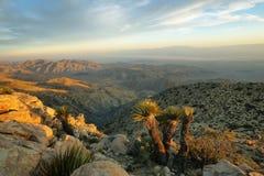 Пустыня Мохаве от пункта воодушевленности стоковая фотография rf