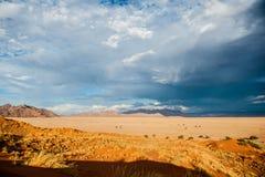 Пустыня Намибии, Африка Стоковое Фото