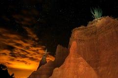 Пустыня на ноче Стоковые Изображения RF