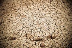 Пустыня на шелковом пути Стоковые Изображения RF