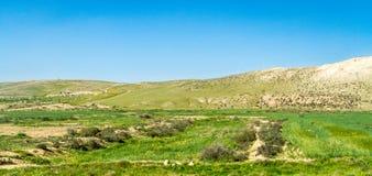 Пустыня Негев в предыдущей весне, Израиле стоковое изображение