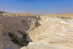 Пустыня Негев Стоковая Фотография