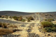 Пустыня Негев Стоковая Фотография RF