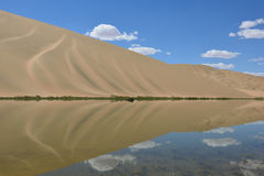 пустыня оазиса Стоковая Фотография