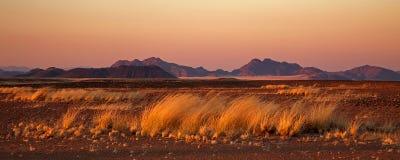 пустыня около восхода солнца sossusvlei Стоковые Фото