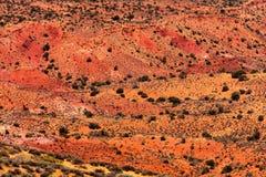 Пустыня оранжевого красного цвета покрашенная сгабривает национальный парк Moab Юту