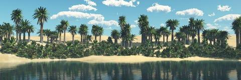 Пустыня песка, панорамы ландшафта пустыни Стоковые Изображения RF
