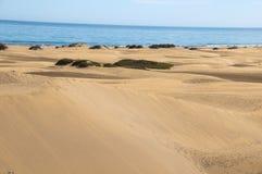Пустыня песчанной дюны Стоковое Фото