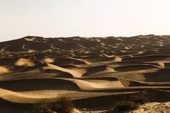 Пустыня под солнцем Стоковые Изображения RF