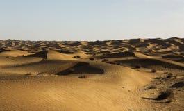 Пустыня под солнцем Стоковое фото RF