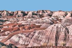 пустыня покрасила стоковое фото