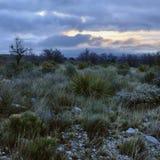 пустыня рассвета Стоковая Фотография RF