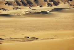пустыня Сахара Египет вышесказанного стоковые фотографии rf